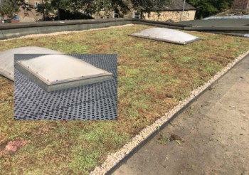 Grass Concrete Hits the Roof