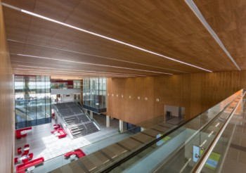 Hunter Douglas Architectural presents new range of wooden ceiling and wall systems with nano-perforations